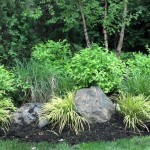 Rain Garden Takes Sump Pump Water Runoff