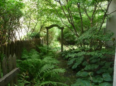 Shady Glade in Side Yard with Lovely Arbor to Front Garden