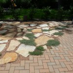 Quartzite and Brick Patio with Creeping Thyme